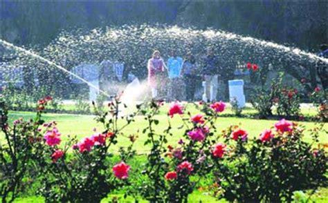 rock garden chd garden chd location garden ftempo