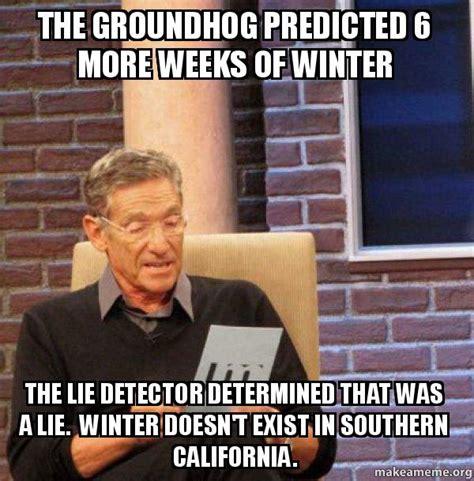 Maury Lie Detector Meme - maury povich lie detector test meme