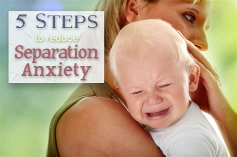 how to a s separation anxiety 5 steps to reduce separation anxiety in children wheels needed