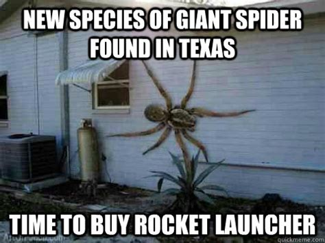 Spider Memes - nope time to buy a weapon shed with food to last for