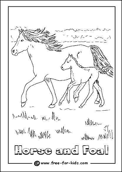 Coloring Pages Of Horses And Foals by Colouring Page Of A And Foal Http