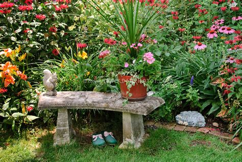 Garden Bench And Garden Shoes Plant Flower Stock Gardening Plants And Flowers