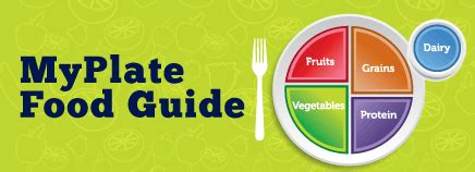 Myplate Food Guide