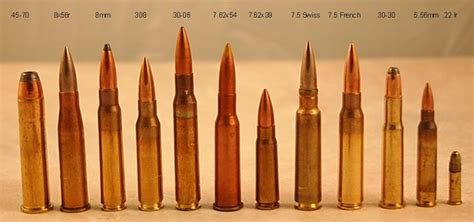 ammo and gun collector august 2013