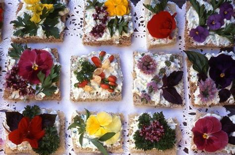 flower food recipe pin by dino saw on arty party pinterest