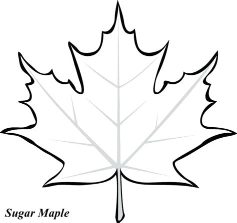 coloring pages of jungle leaves jungle leaves coloring pages go digital with us
