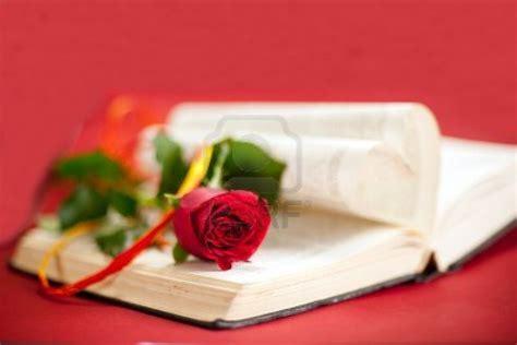 imagenes de rosas sobre libros frases de flores en el atico cadapalabraesvida