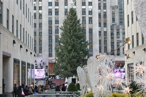 rockefeller center christmas tree pictures new york
