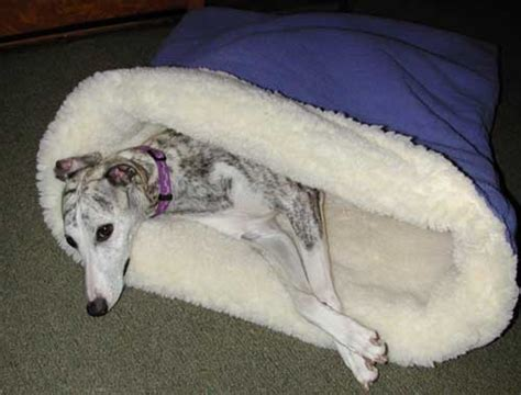 Pita Doggie the pita bed a sleeping bag snuggle and burrow bed for dogs