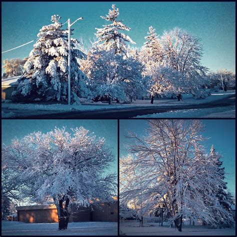 Weather Garden City Mi by Winter Of The Season November 21 2015