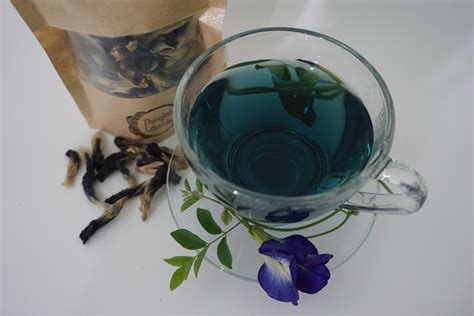 Butterfly Pea Tea 1 butterfly pea tea clitoria ternatea by thinglish lifestyle