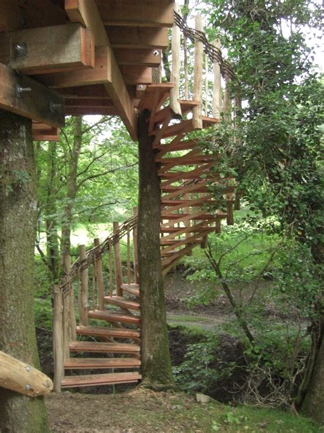 how to build a spiral staircase around a tree 6   Best