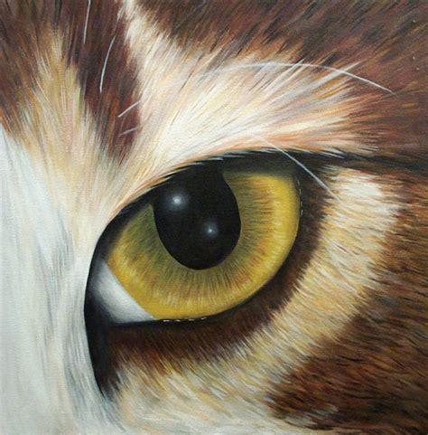 cat eye cat s eye view mpl code breaker 2 14