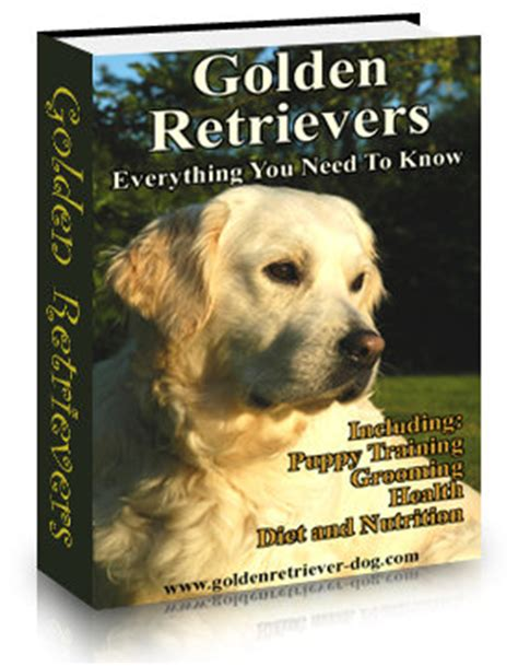 golden retriever book to learn more about golden retrievers order now and get