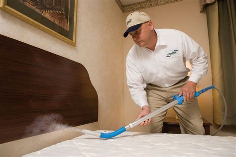 exterminating bed bugs bed bugs extermination tips bed bugs exterminator guide