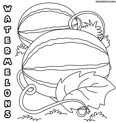 whole watermelon coloring page whole watermelon page coloring pages