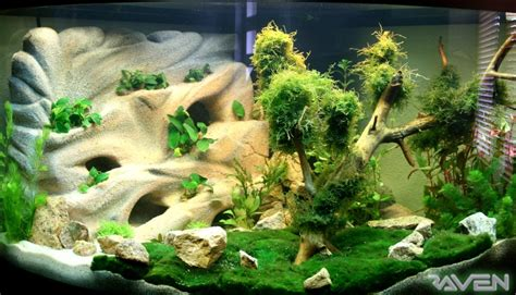 Decor Polystyrene Aquarium by D 233 Cor Aquarium Falaise