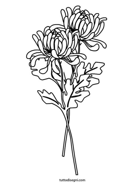chrysanthemums coloring page autumn pinterest