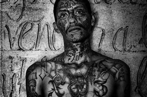 ms 13 tattoo h e tattoos amp the drug war