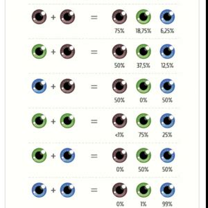 punnett square for eye color should i tell my i am not his biological