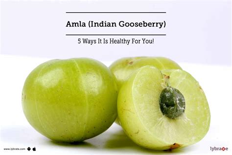 Amla Gooseberry For Hair by Amla Indian Gooseberry 5 Ways It Is Healthy For You