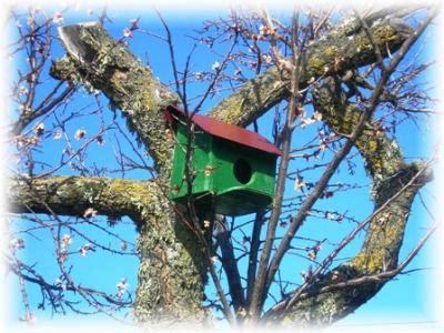 casas rurales baratas salamanca casas rurales baratas en salamanca turismo rural en