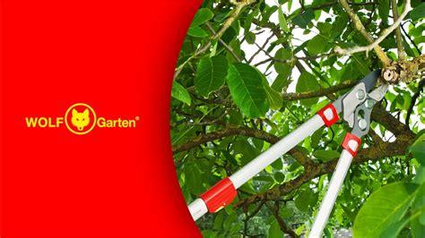 www garten wolf garten power cut 174 bypass astschere rr900t