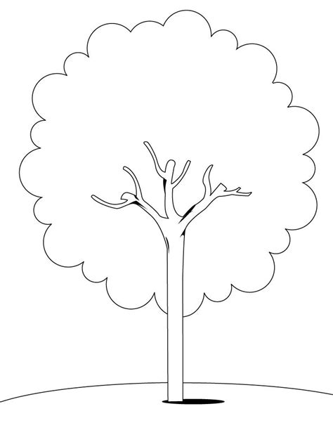 Tree Coloring Pages Coloring Pages To Print Printable Tree Coloring Page
