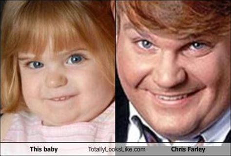 Chris Farley Reincarnation Meme - chris farley reincarnated memes