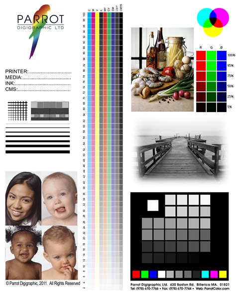 Support Parrot Digigraphic Ltd Test Page For Color Printer Pdf