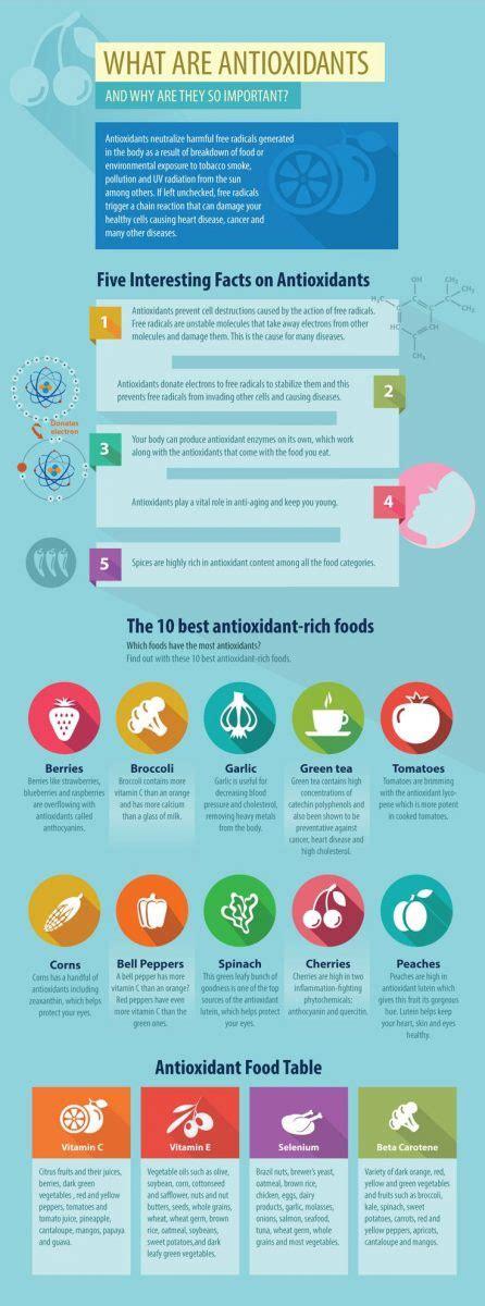 alimentazione antiossidante alimenti antiossidanti perch 233 sono cos 236 importanti