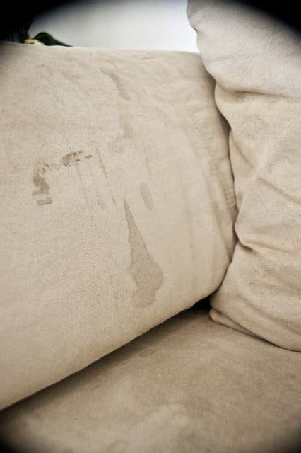 deep cleaning microfiber couch 17 best ideas about cleaning microfiber couch on pinterest