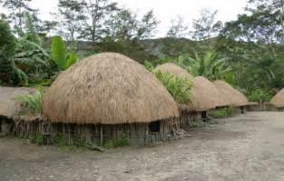 rumah adat papua rumah honai gambar dan penjelasannya adat tradisional
