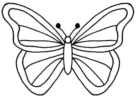 Outline Of Flowers And Butterflies by Butterflies And Flowers Outlines Clipart Best Clipart Best Clipart Best
