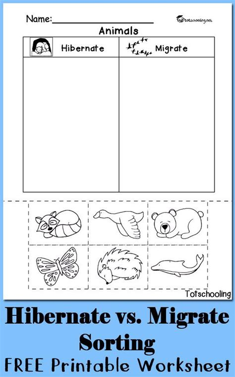 39 best sorting categorizing worksheets images on 17 best images about science for animal on