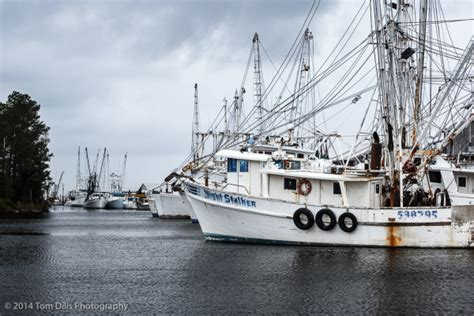 swan point boats washington nc playing catch up tom dills photography blog
