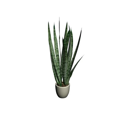 Planner 3d sansevieria design and decorate your room in 3d