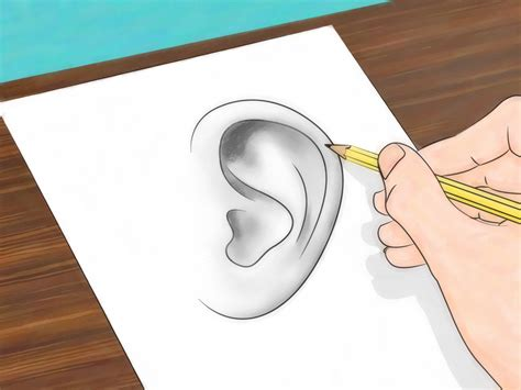make a drawing how to draw ears 6 steps with pictures wikihow