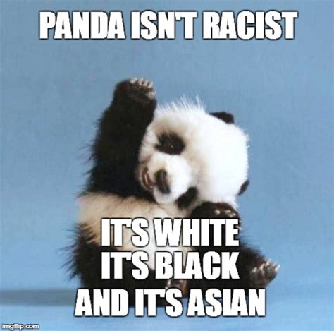 Cutest Memes - 15 cutest panda memes which ruled the internet viral slacker