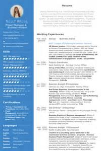 Analyste D Affaires Exemple De Cv Base De Donn 233 Es Des Cv