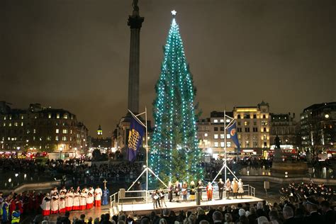 trafalgar square christmas tree sparkles following light
