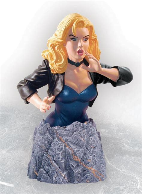 Dc Bust Black Canary collection stash a collector and artist platform for building and your collection