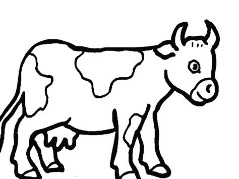 Cow Color Page free printable cow coloring pages for