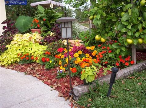 flower bed fall colors photo terri alderslade photos at pbase com
