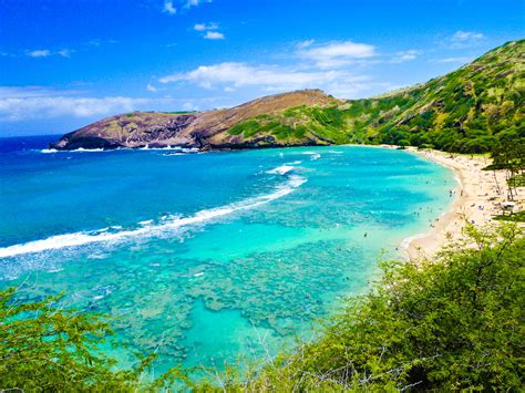 top world pic hawaii beach all of oahu in one day tour hawaii discount