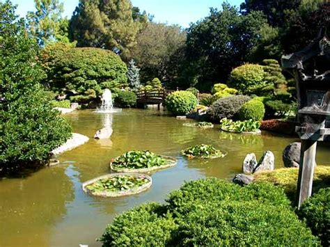 japanese tea garden san mateo usa gardens parks