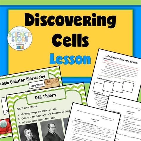 cell theory worksheet middle school 39 best middle school science biology images on science science biology
