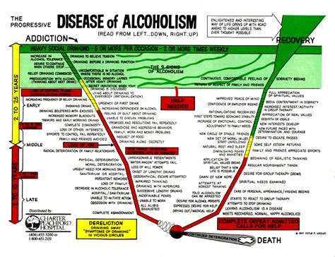 What Daily Detox Looks Like Alcoholism by Alcoholism Stages Of Alcoholism School Project
