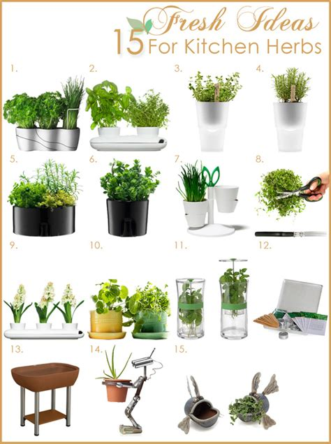 herb kitchen kitchen herb garden fresh kitchen design ideas by grace
