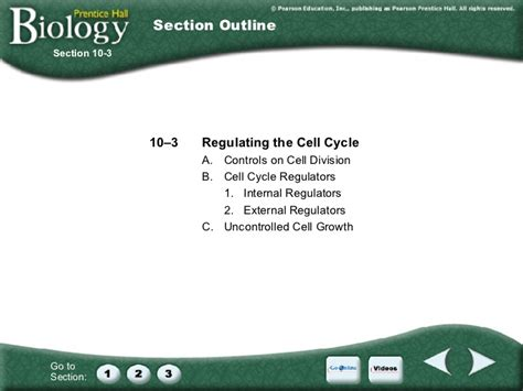 section 10 3 regulating the cell cycle answers cell growth and division worksheet chapter 5 chapter 10